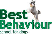 Best Behaviour School for Dogs
