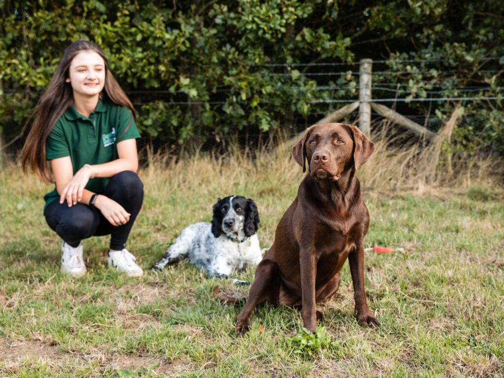 Dog walking school Hythe